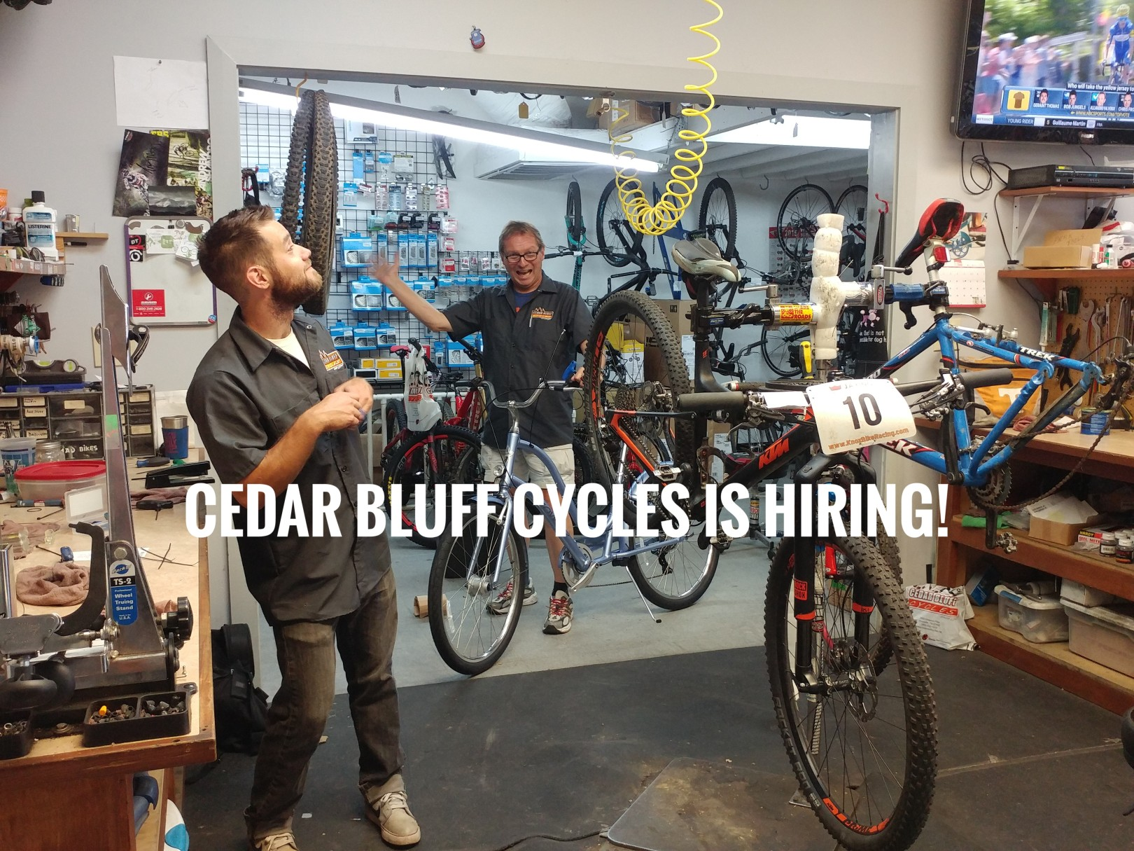 Cedar Bluff Cycles Knoxville Jobs